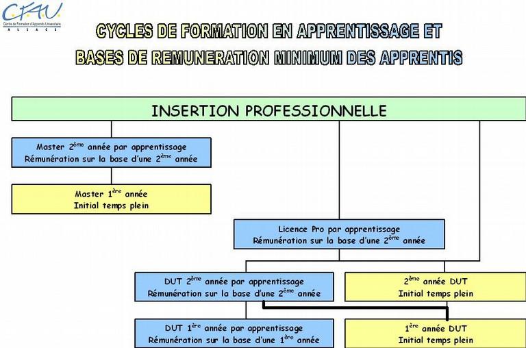 Combien gagne un apprenti cfau l 39 apprentissage a l 39 universite mulhouse colmar strasbourg - Grille salaire contrat d apprentissage ...
